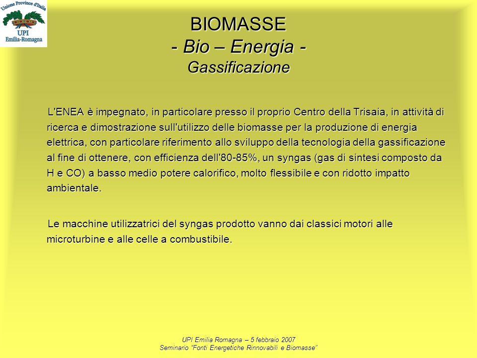 UPI Emilia Romagna – 5 febbraio 2007 Seminario Fonti Energetiche Rinnovabili e Biomasse BIOMASSE - Bio – Energia - Gassificazione L'ENEA è impegnato,