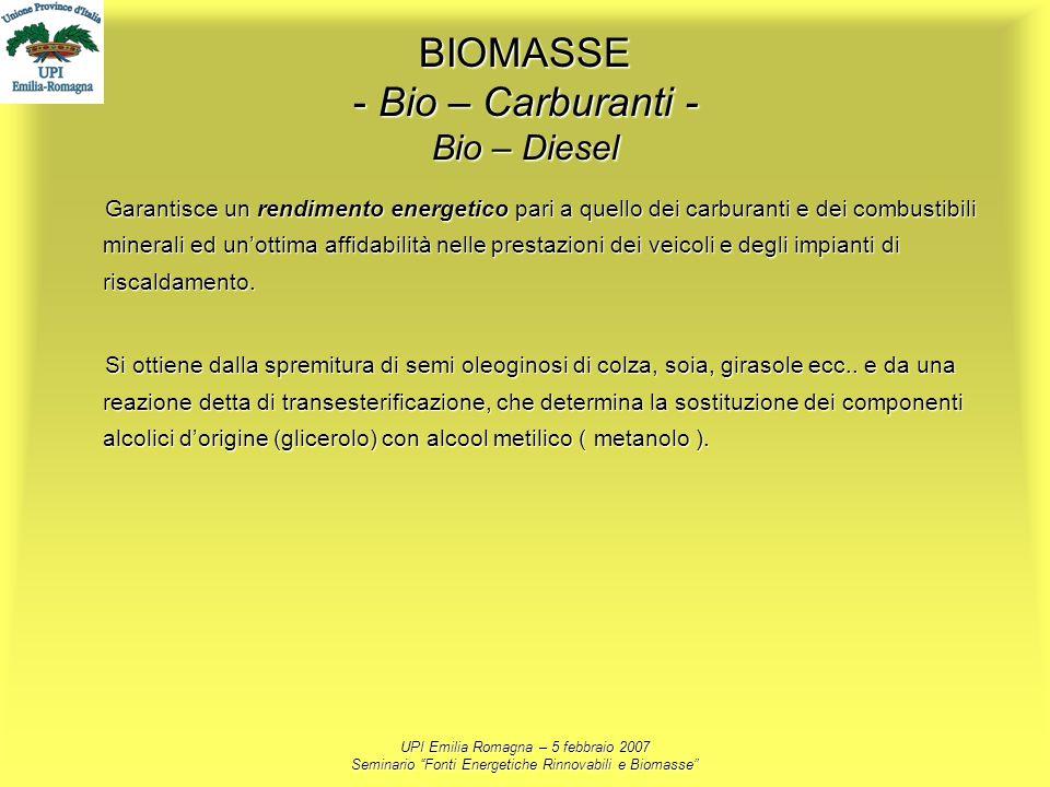 UPI Emilia Romagna – 5 febbraio 2007 Seminario Fonti Energetiche Rinnovabili e Biomasse BIOMASSE - Bio – Carburanti - Bio – Diesel Garantisce un rendi