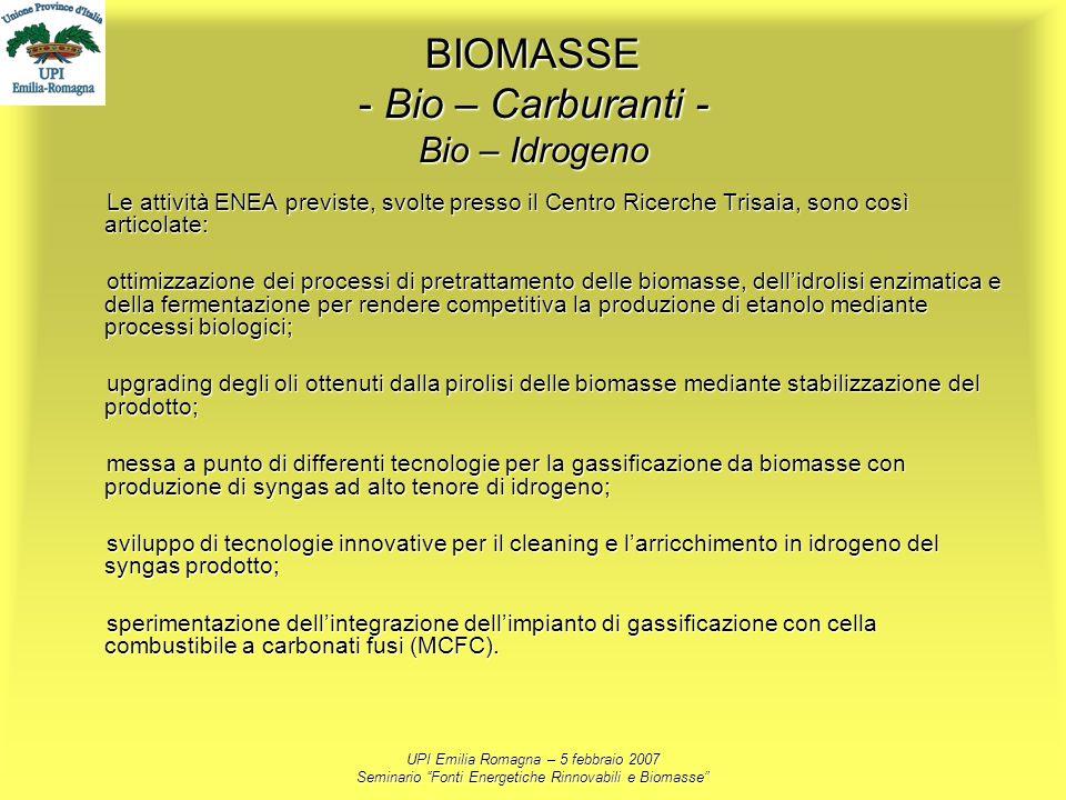 UPI Emilia Romagna – 5 febbraio 2007 Seminario Fonti Energetiche Rinnovabili e Biomasse BIOMASSE - Bio – Carburanti - Bio – Idrogeno Le attività ENEA