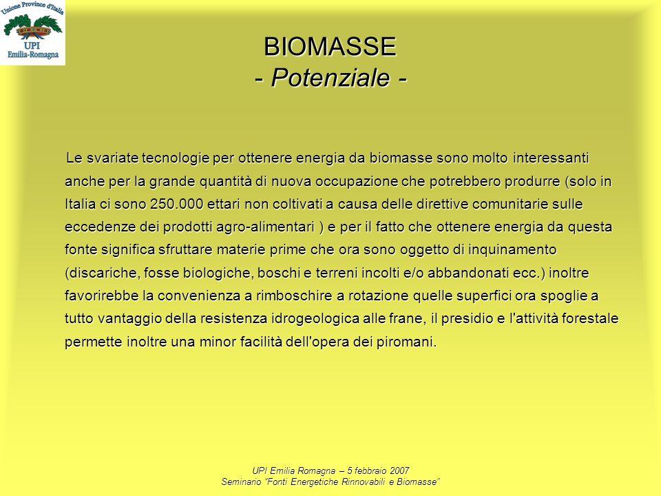 UPI Emilia Romagna – 5 febbraio 2007 Seminario Fonti Energetiche Rinnovabili e Biomasse BIOMASSE - Potenziale - Le svariate tecnologie per ottenere en