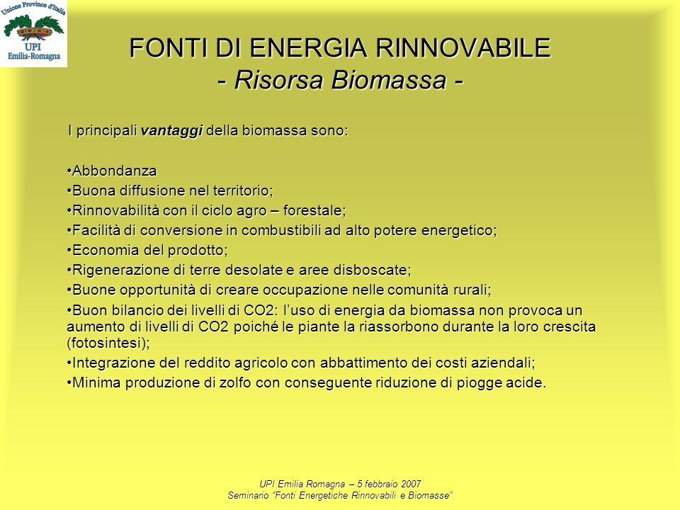 UPI Emilia Romagna – 5 febbraio 2007 Seminario Fonti Energetiche Rinnovabili e Biomasse FONTI DI ENERGIA RINNOVABILE - Risorsa Biomassa - I principali