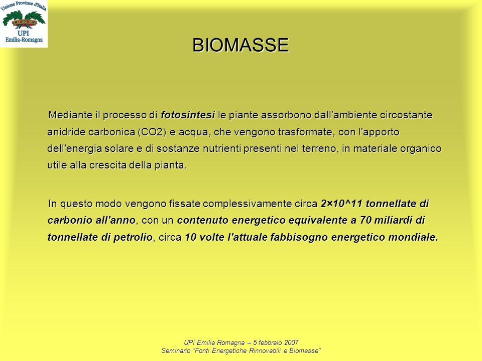 UPI Emilia Romagna – 5 febbraio 2007 Seminario Fonti Energetiche Rinnovabili e Biomasse BIOMASSE Mediante il processo di fotosintesi le piante assorbo