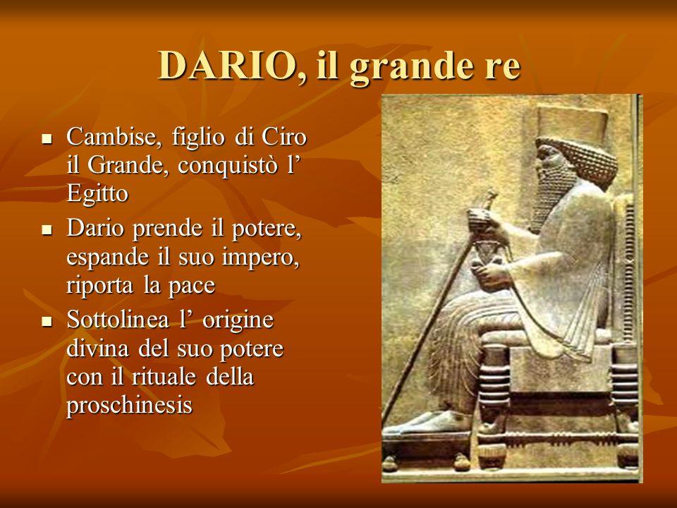 DARIO, il grande re Cambise, figlio di Ciro il Grande, conquistò l Egitto Cambise, figlio di Ciro il Grande, conquistò l Egitto Dario prende il potere