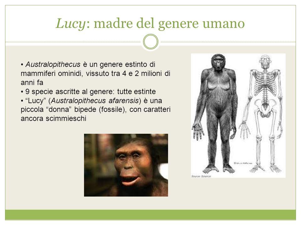 Lucy: madre del genere umano Australopithecus è un genere estinto di mammiferi ominidi, vissuto tra 4 e 2 milioni di anni fa 9 specie ascritte al gene