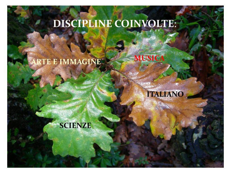 DISCIPLINE COINVOLTE: ARTE E IMMAGINE SCIENZE ITALIANO MUSICA