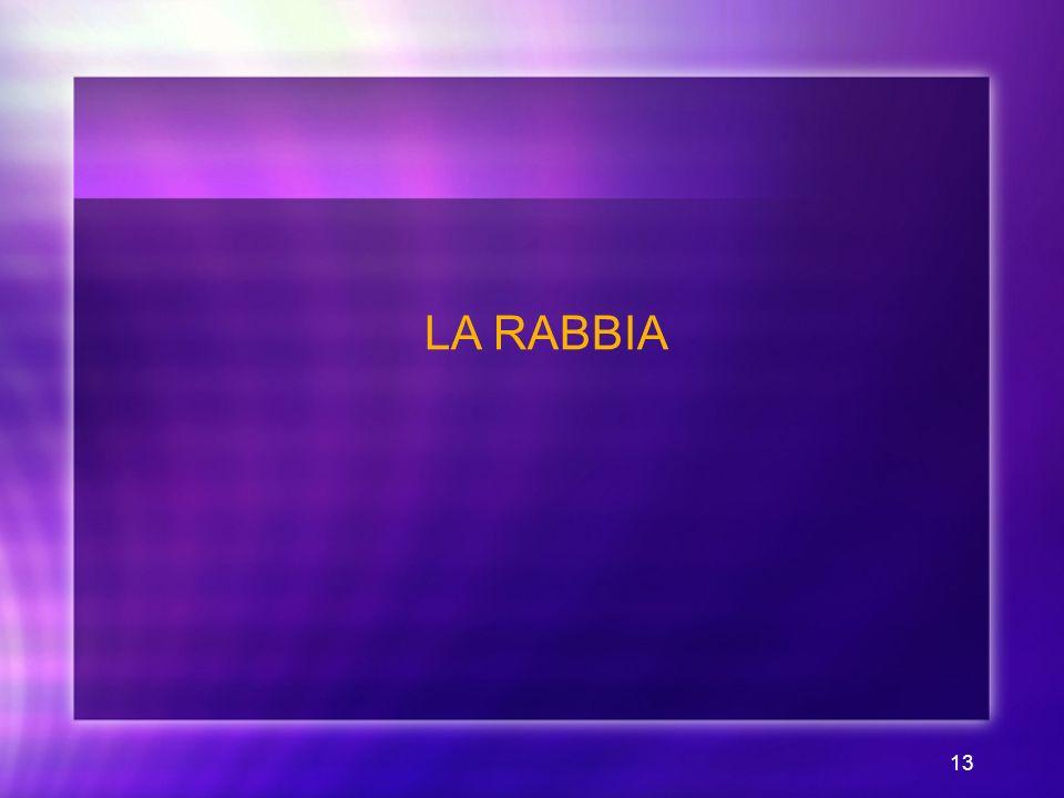 13 LA RABBIA