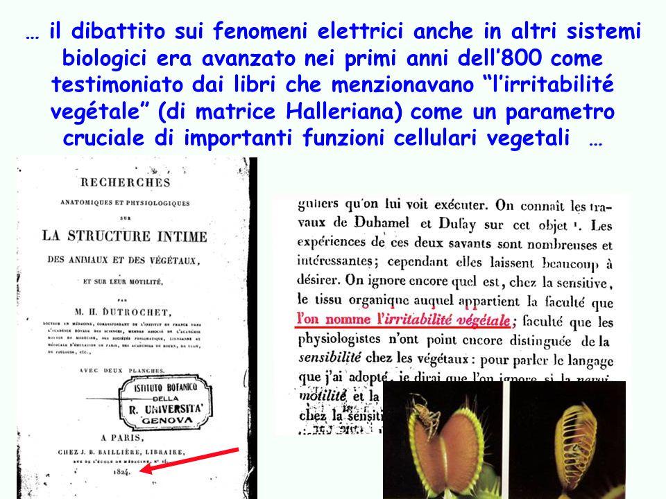 … il dibattito sui fenomeni elettrici anche in altri sistemi biologici era avanzato nei primi anni dell800 come testimoniato dai libri che menzionavan