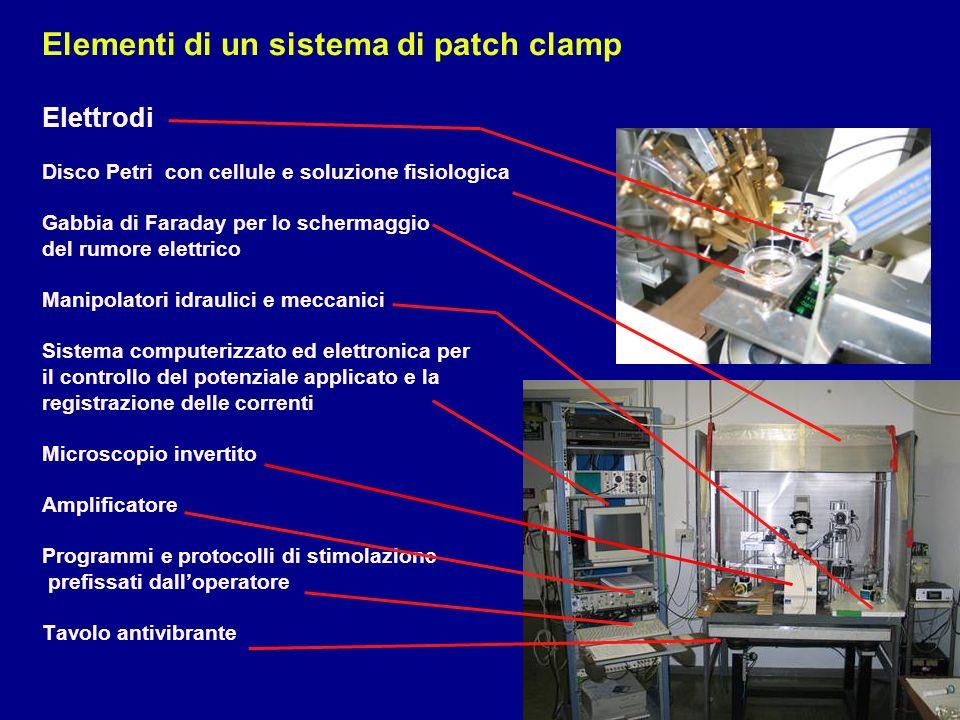 Elementi di un sistema di patch clamp Elettrodi Disco Petri con cellule e soluzione fisiologica Gabbia di Faraday per lo schermaggio del rumore elettr