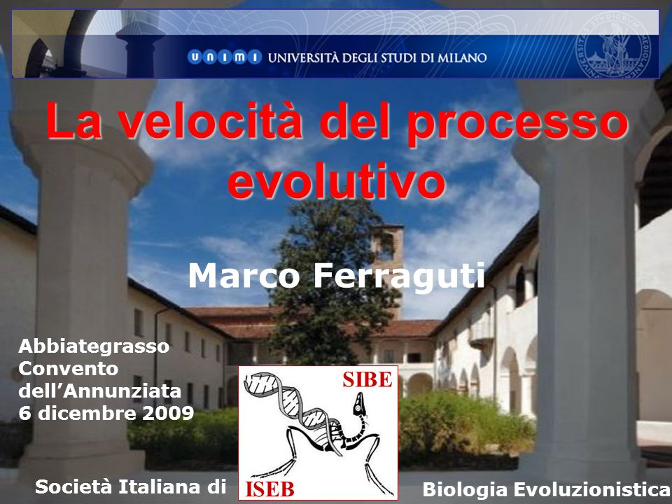 SIBE ISEB Società Italiana di Biologia Evoluzionistica La velocità del processo evolutivo Marco Ferraguti Abbiategrasso Convento dellAnnunziata 6 dice