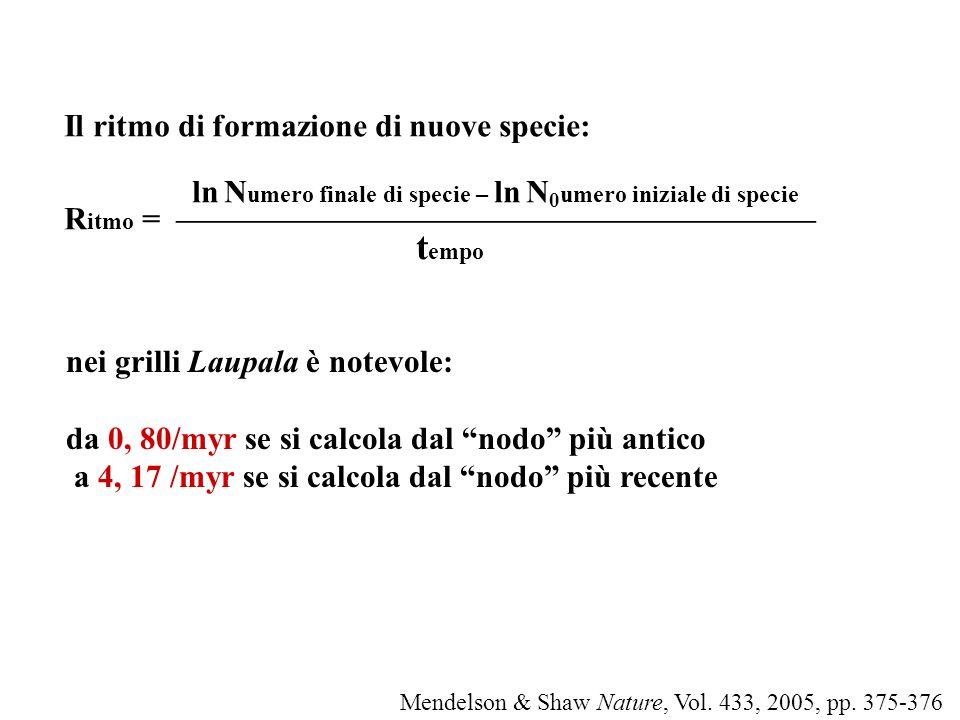 Il ritmo di formazione di nuove specie: ln N umero finale di specie – ln N 0 umero iniziale di specie R itmo = t empo nei grilli Laupala è notevole: d