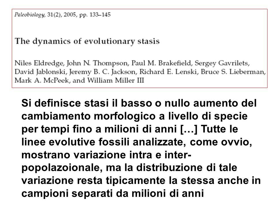 Si definisce stasi il basso o nullo aumento del cambiamento morfologico a livello di specie per tempi fino a milioni di anni […] Tutte le linee evolut