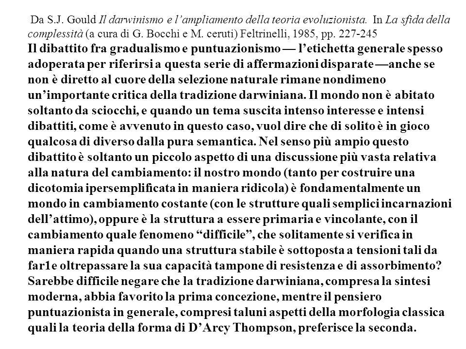 Da S.J. Gould Il darwinismo e lampliamento della teoria evoluzionista. In La sfida della complessità (a cura di G. Bocchi e M. ceruti) Feltrinelli, 19