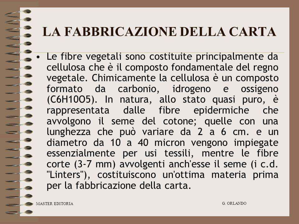 MASTER EDITORIA G. ORLANDO LA FABBRICAZIONE DELLA CARTA Le fibre vegetali sono costituite principalmente da cellulosa che è il composto fondamentale d