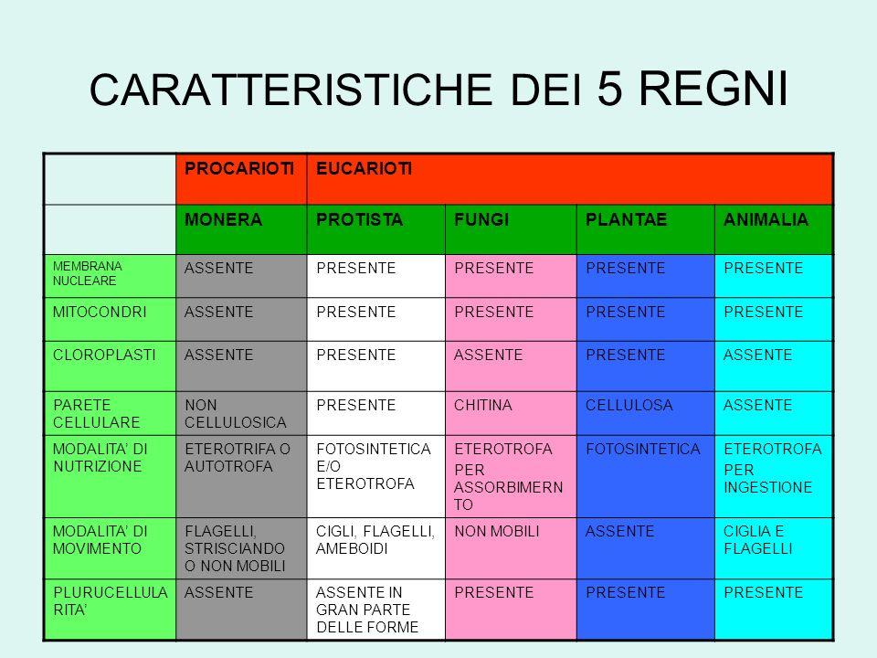 DIAGRAMMA DI FLUSSO PER LA CLASSIFICAZIONE DEI 5 REGNI START LOGGETTO ESAMINATO HA STRUTTURA CELLULARE.