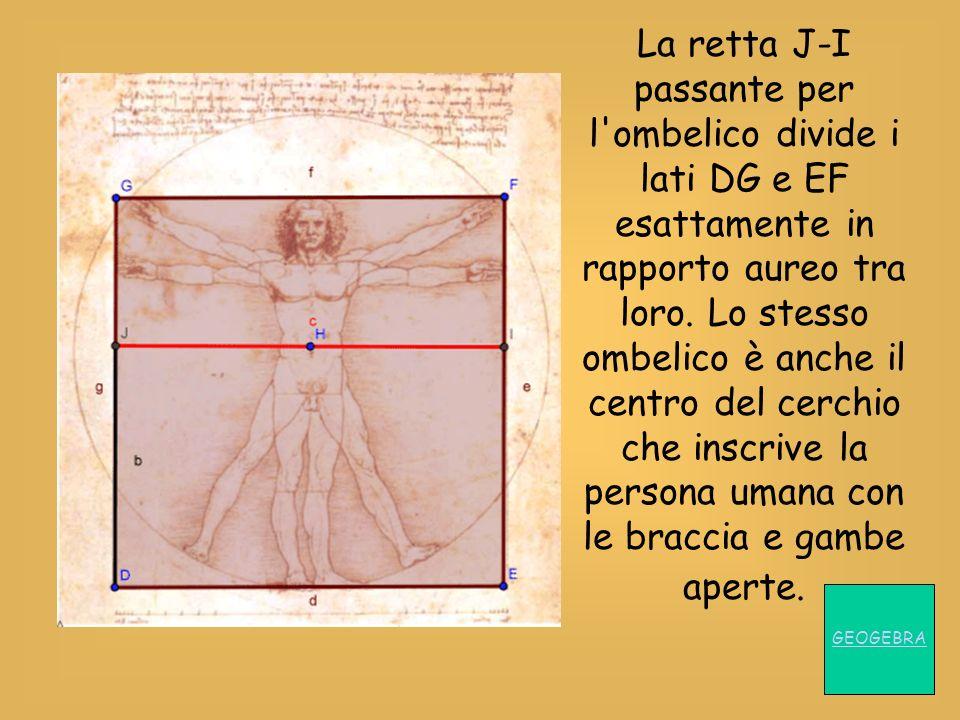 La retta J-I passante per l'ombelico divide i lati DG e EF esattamente in rapporto aureo tra loro. Lo stesso ombelico è anche il centro del cerchio ch