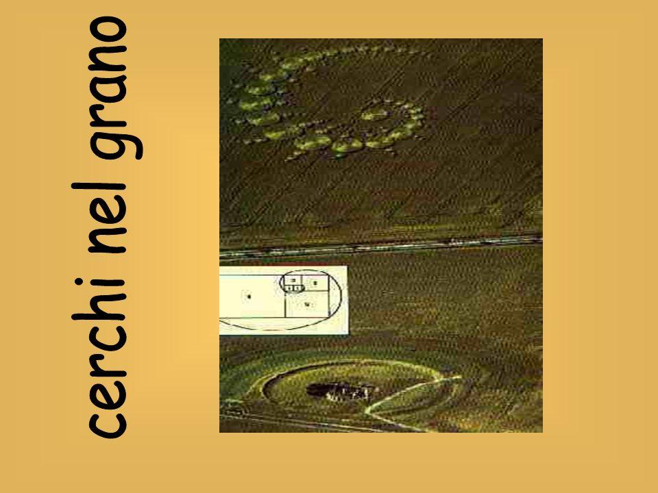Si consideri un rettangolo aureo , ovvero un rettangolo le cui dimensioni siano in rapporto aureo.
