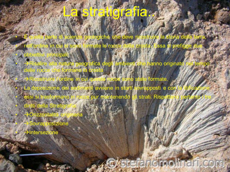 La stratigrafia.. È quella parte di scienze geologiche che deve ricostruire la storia della terra, nellordine in cui si sono formate le rocce della cr