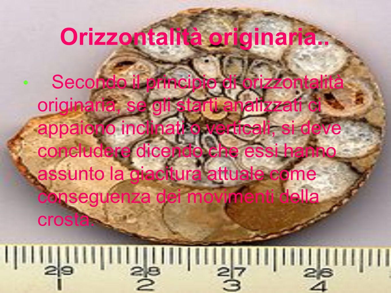 Orizzontalità originaria.. Secondo il principio di orizzontalità originaria, se gli starti analizzati ci appaiono inclinati o verticali, si deve concl
