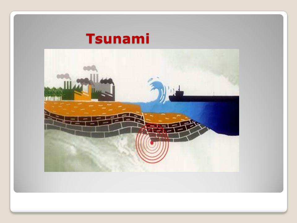 Tsunami Tsunami