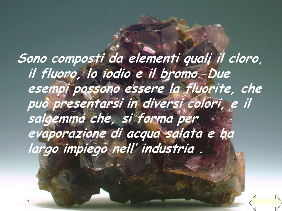 Sono composti da elementi quali il cloro, il fluoro, lo iodio e il bromo. Due esempi possono essere la fluorite, che può presentarsi in diversi colori