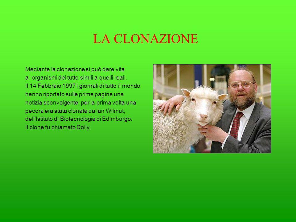 LA CLONAZIONE Mediante la clonazione si può dare vita a organismi del tutto simili a quelli reali. Il 14 Febbraio 1997 i giornali di tutto il mondo ha