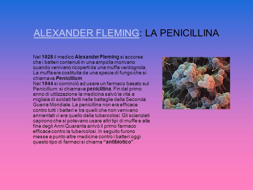 ALEXANDER FLEMINGALEXANDER FLEMING: LA PENICILLINA Nel 1928 il medico Alexander Fleming si accorse che i batteri contenuti in una ampolla morivano qua