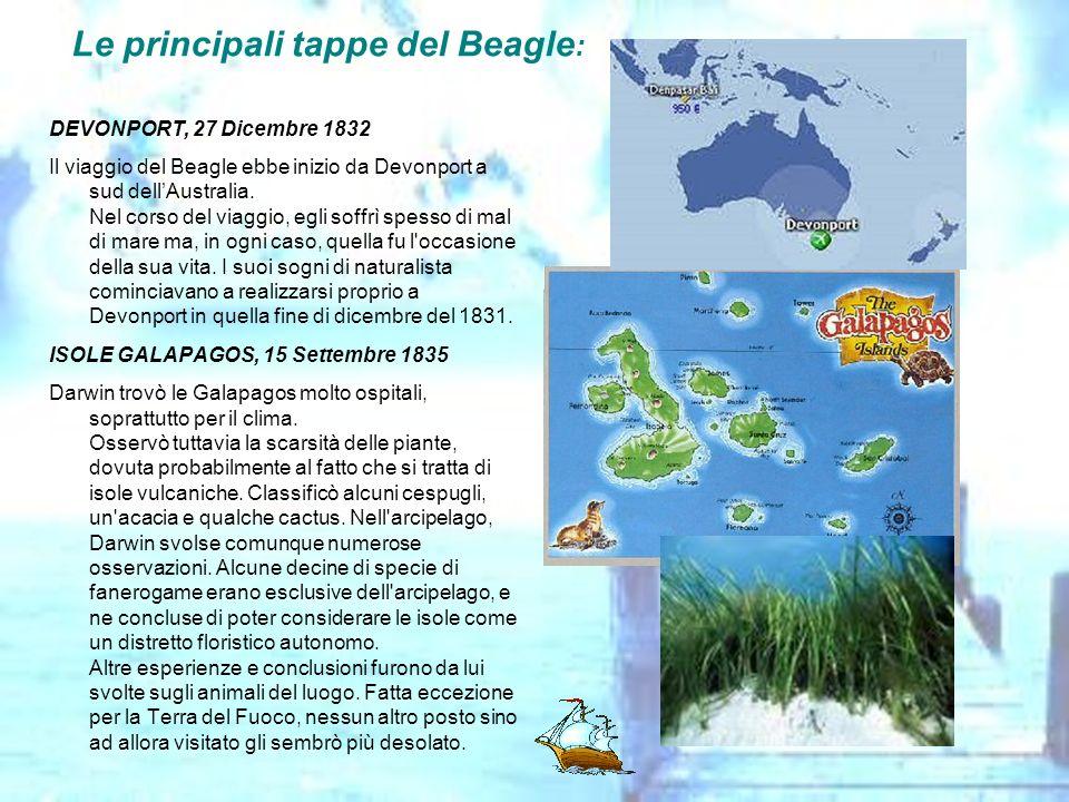 Le principali tappe del Beagle : DEVONPORT, 27 Dicembre 1832 Il viaggio del Beagle ebbe inizio da Devonport a sud dellAustralia. Nel corso del viaggio