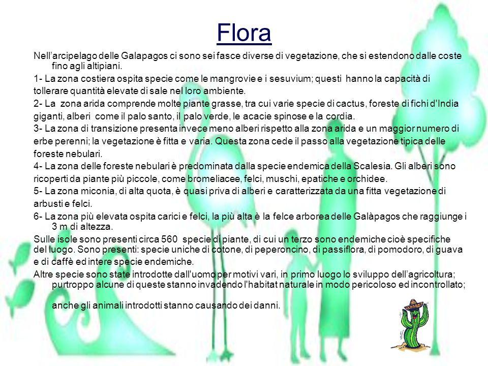 Flora Nellarcipelago delle Galapagos ci sono sei fasce diverse di vegetazione, che si estendono dalle coste fino agli altipiani. 1- La zona costiera o