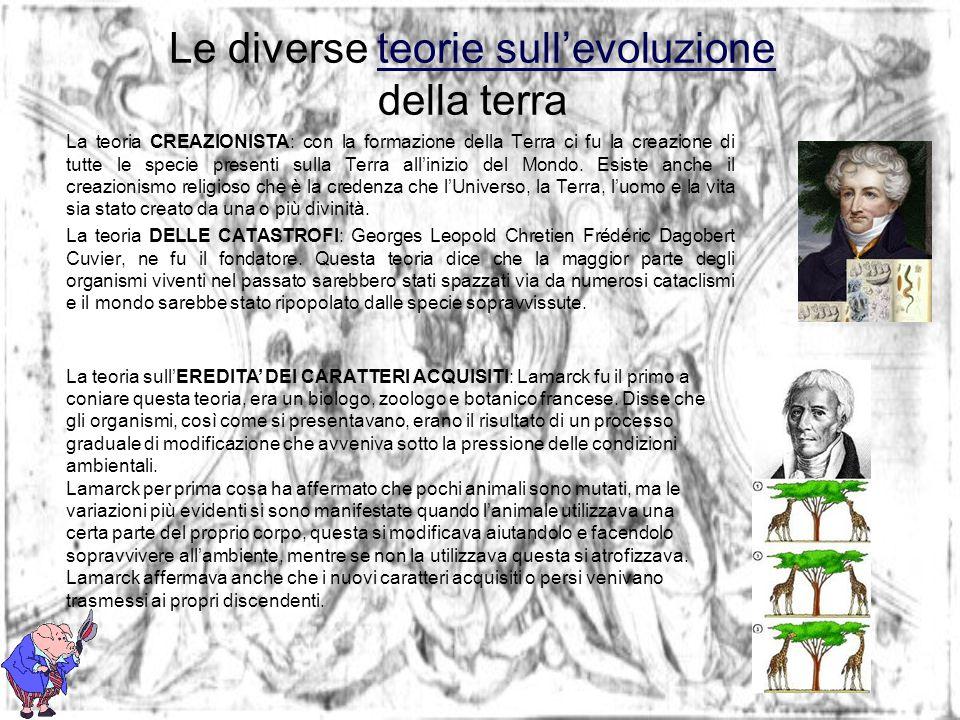 Le diverse teorie sullevoluzione della terrateorie sullevoluzione La teoria CREAZIONISTA: con la formazione della Terra ci fu la creazione di tutte le