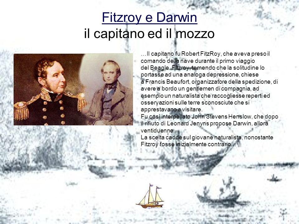 Fitzroy e Darwin Fitzroy e Darwin il capitano ed il mozzo …Il capitano fu Robert FitzRoy, che aveva preso il comando della nave durante il primo viagg