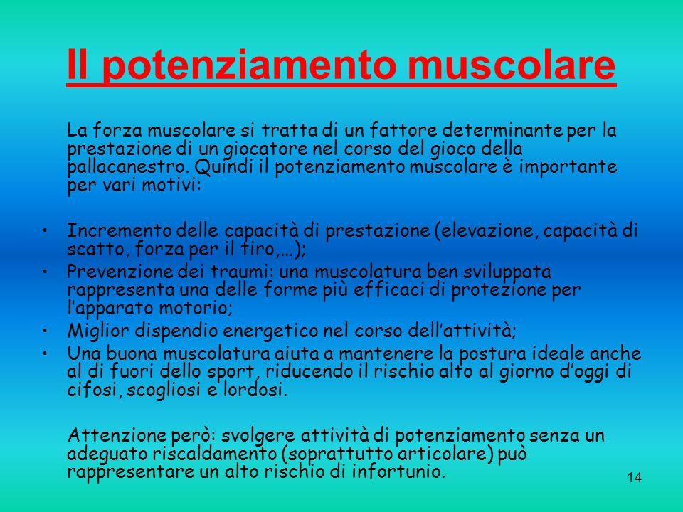 14 Il potenziamento muscolare La forza muscolare si tratta di un fattore determinante per la prestazione di un giocatore nel corso del gioco della pal