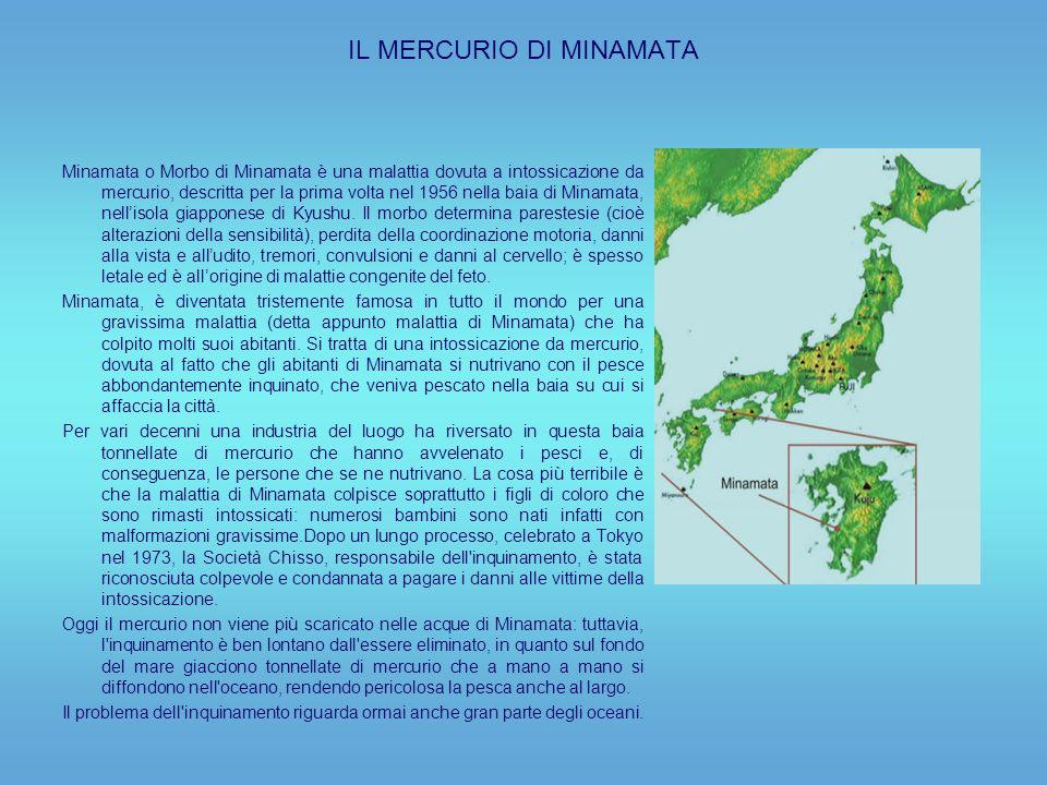 IL MERCURIO DI MINAMATA Minamata o Morbo di Minamata è una malattia dovuta a intossicazione da mercurio, descritta per la prima volta nel 1956 nella baia di Minamata, nellisola giapponese di Kyushu.