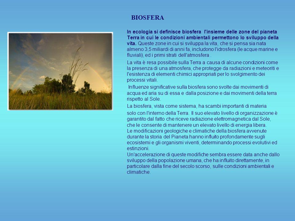 BIOSFERA In ecologia si definisce biosfera l insieme delle zone del pianeta Terra in cui le condizioni ambientali permettono lo sviluppo della vita.