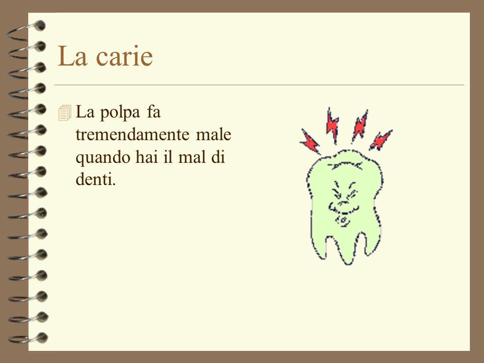 La buona digestione inizia in bocca 4 La buona digestione inizia in bocca: la prima operazione di trasformazione del cibo avviene in bocca; quando i d