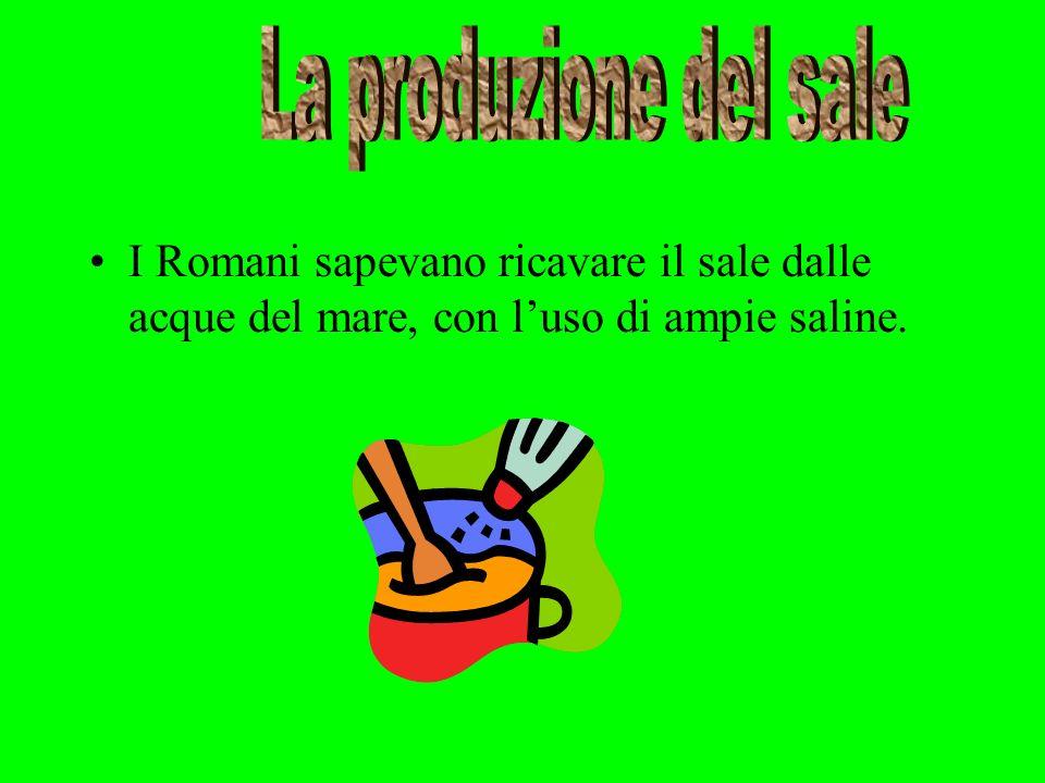 I Romani sapevano ricavare il sale dalle acque del mare, con luso di ampie saline.
