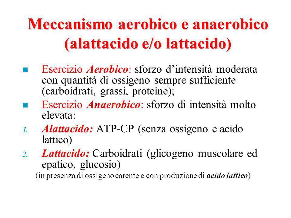 Meccanismo aerobico e anaerobico (alattacido e/o lattacido) n Esercizio Aerobico: sforzo dintensità moderata con quantità di ossigeno sempre sufficiente (carboidrati, grassi, proteine); n Esercizio Anaerobico: sforzo di intensità molto elevata: 1.