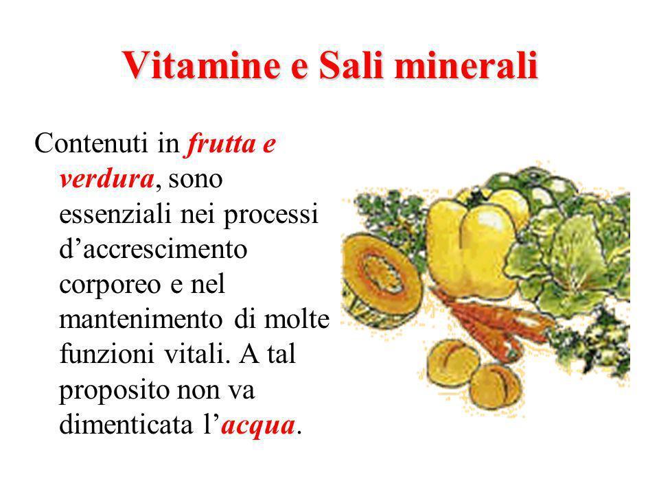 Vitamine e Sali minerali Contenuti in frutta e verdura, sono essenziali nei processi daccrescimento corporeo e nel mantenimento di molte funzioni vitali.
