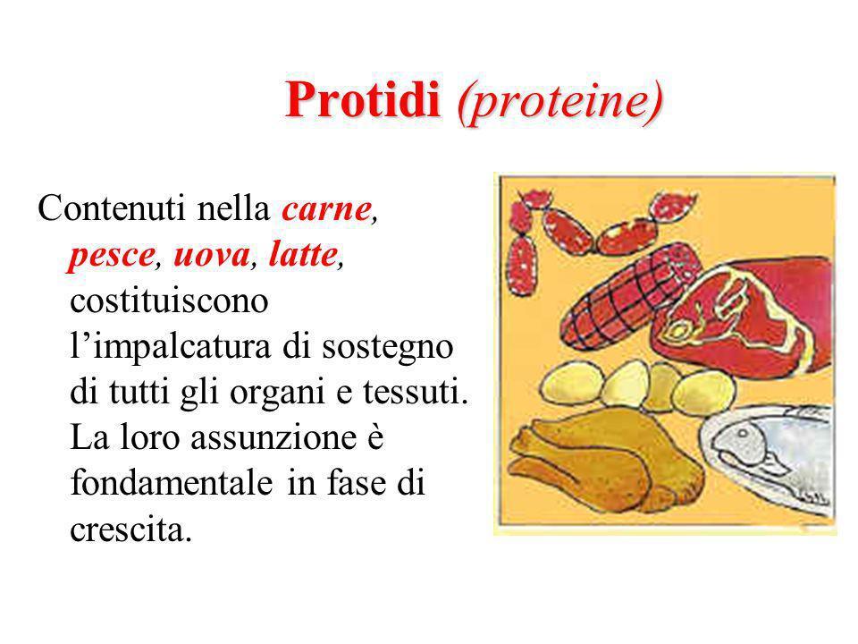 Protidi (proteine) Contenuti nella carne, pesce, uova, latte, costituiscono limpalcatura di sostegno di tutti gli organi e tessuti.