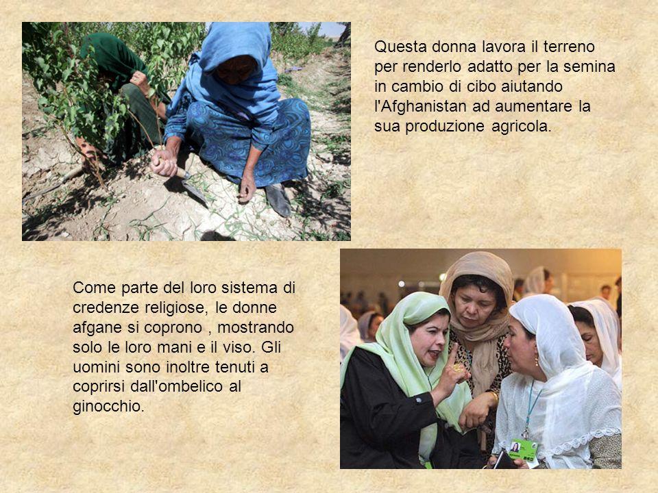Questa donna lavora il terreno per renderlo adatto per la semina in cambio di cibo aiutando l'Afghanistan ad aumentare la sua produzione agricola. Com