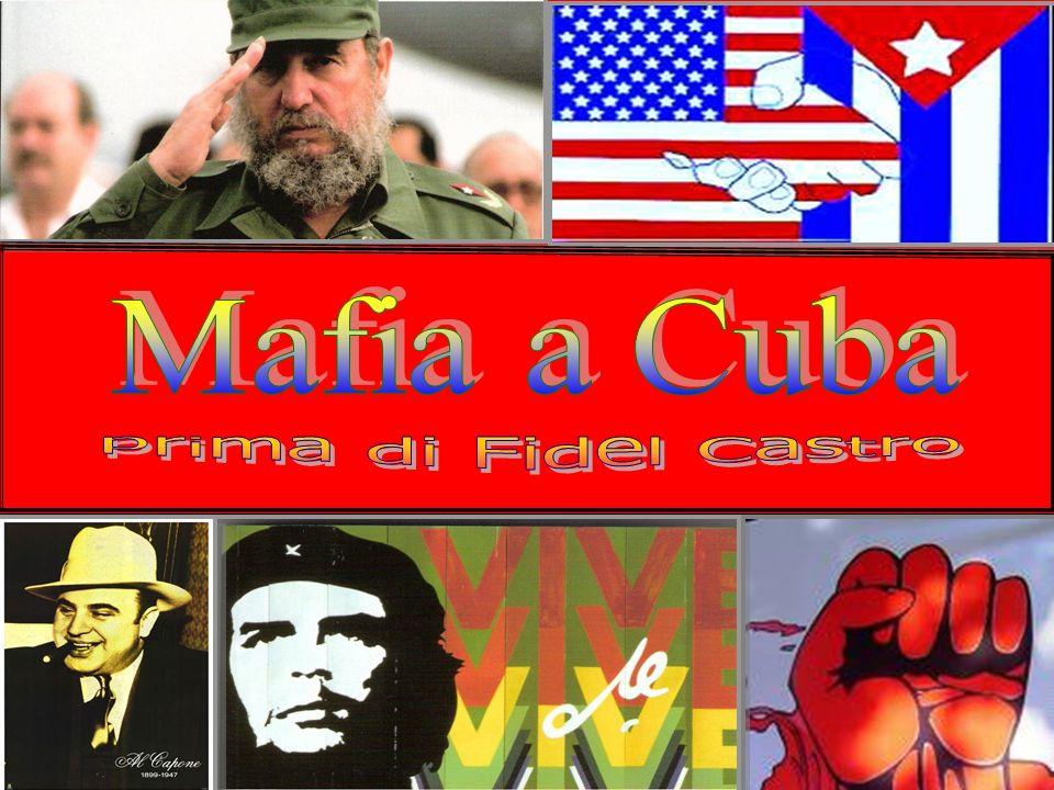 Mafia è un termine diffuso ormai a livello mondiale, con cui ci si riferisce ad una particolare tipologia di organizzazioni criminali.