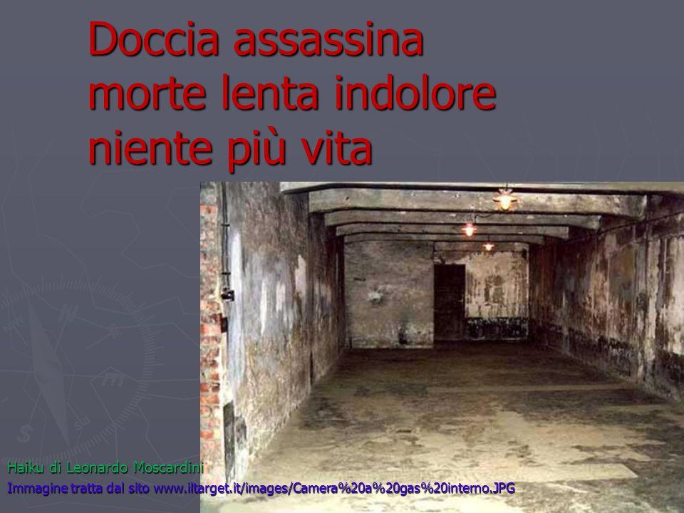 Doccia assassina morte lenta indolore niente più vita Haiku di Leonardo Moscardini Immagine tratta dal sito www.iltarget.it/images/Camera%20a%20gas%20