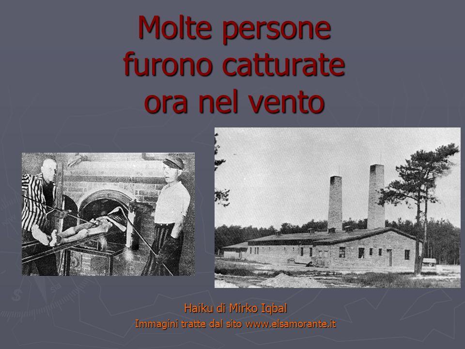 Molte persone furono catturate ora nel vento Haiku di Mirko Iqbal Immagini tratte dal sito www.elsamorante.it