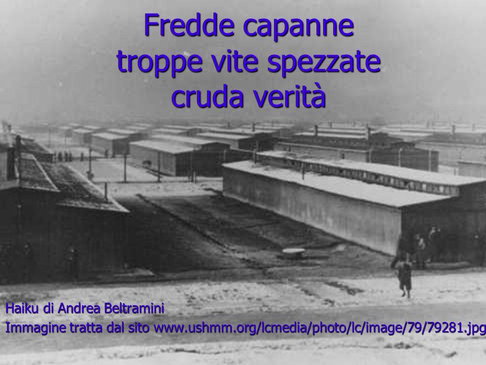 Fredde capanne troppe vite spezzate cruda verità Haiku di Andrea Beltramini Immagine tratta dal sito www.ushmm.org/lcmedia/photo/lc/image/79/79281.jpg