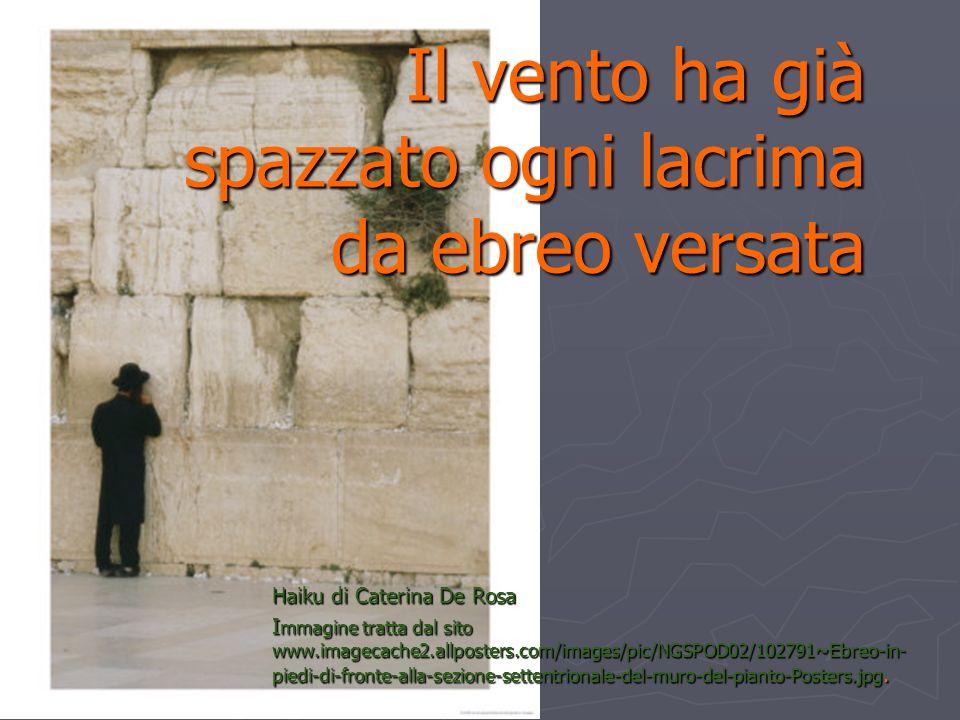 Il vento ha già spazzato ogni lacrima da ebreo versata Haiku di Caterina De Rosa I mmagine tratta dal sito www.imagecache2.allposters.com/images/pic/N