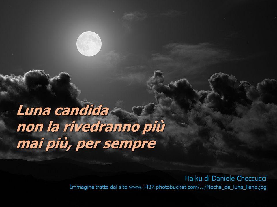 Luna candida non la rivedranno più mai più, per sempre Haiku di Daniele Checcucci Immagine tratta dal sito www. i437.photobucket.com/.../Noche_de_luna