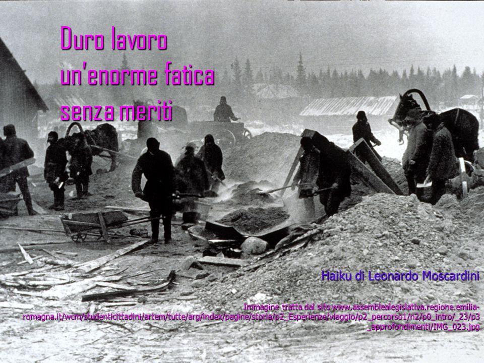 Duro lavoro unenorme fatica senza meriti Haiku di Leonardo Moscardini Immagine tratta dal sito www.assemblealegislativa.regione.emilia- romagna.it/wcm