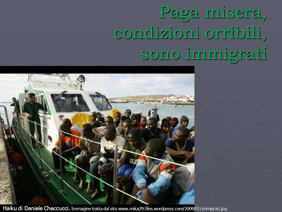 Paga misera, condizioni orribili, sono immigrati Haiku di Daniele Checcucci. Immagine tratta dal sito www.mika29.files.wordpress.com/2009/01/immigrati