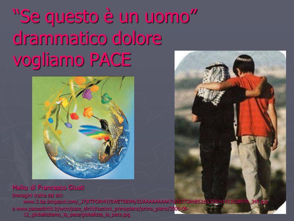 Se questo è un uomo drammatico dolore vogliamo PACE Haiku di Francesco Giusti Immagini tratte dai siti: www.3.bp.blogspot.com/_J7jXTPORi4Y/SWET68IMy3I