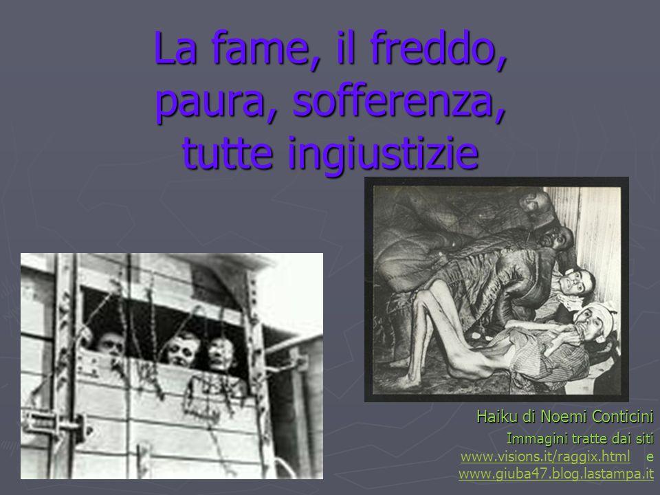 La fame, il freddo, paura, sofferenza, tutte ingiustizie Haiku di Noemi Conticini Immagini tratte dai siti Immagini tratte dai siti www.visions.it/rag