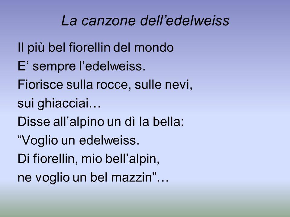 La canzone delledelweiss Il più bel fiorellin del mondo E sempre ledelweiss. Fiorisce sulla rocce, sulle nevi, sui ghiacciai… Disse allalpino un dì la